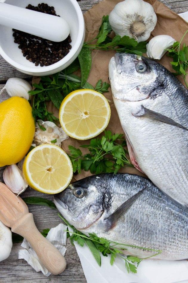 fisk musslor 567-3